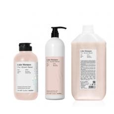 Купить Шампунь для защиты цвета и блеска окрашенных волос Back Bar Color Shampoo №01  в Минске